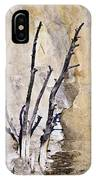 Dead Trees At Mammoth IPhone Case