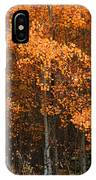 Deciduous Aspen Forest In Fall IPhone Case