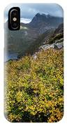 Deciduous Beech Or Fagus In Colour IPhone Case