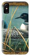 Deco Loons IPhone Case