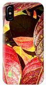 Deep Into Autumn IPhone Case