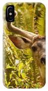 Deer Buck In Velvet IPhone Case
