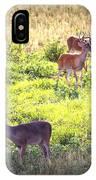 Deer-img-0437-001 IPhone Case