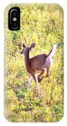 Deer-img-0456-001 IPhone Case