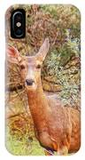 Deer In Forest IPhone Case