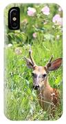 Deer In Magee Marsh IPhone Case