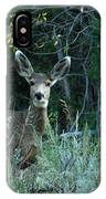 Deer Looking At You IPhone Case
