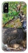 Deer Relaxing IPhone Case