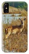 Deer The Point Hatteras Nc 2 12/5 IPhone Case