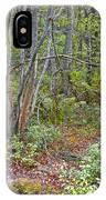 Deer Trail Early Autumn Pocono Mountains Pennsylvania IPhone Case