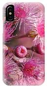Delicate Buds And Blossoms IPhone Case