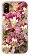 Desert Calico Wildflowers IPhone Case