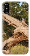 Desert Creation IPhone Case