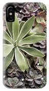 Desert Flora IPhone Case