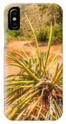 Desert Reds And Greens IPhone Case
