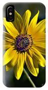 Desert Sunflower IPhone Case