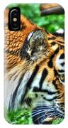 Determination In The Tigers Stare IPhone Case