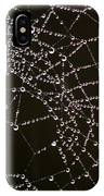 Dew Drops On Spider Web 4 IPhone Case