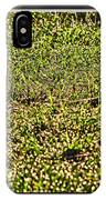 Dew In The Sun IPhone Case