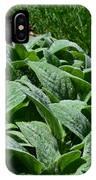 Dew Kissed Foliage IPhone Case