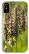 Dew On The Grass IPhone Case