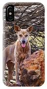 Dingo In The Wild V5 IPhone Case