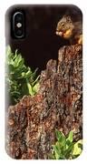 Dining Alfresco IPhone Case