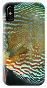 Discus Symphysodon Discus IPhone Case