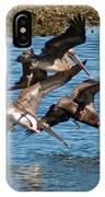 Diving Pelicans IPhone Case