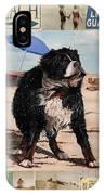 Dog Days Of Summer V2 IPhone Case