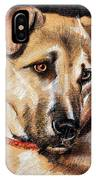 Dog Portrait Drawing IPhone Case