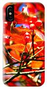 Dogwood In Autumn IPhone Case
