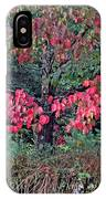 Dogwood Leaves In The Fall IPhone Case