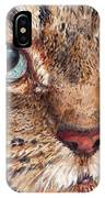 Domestic Tabby Cat IPhone Case