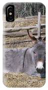 Donkey In Hay IPhone Case