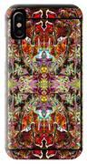 Doorways Thru Sacred Bridge IPhone Case
