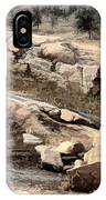 Downhill Sequoia National Park IPhone Case