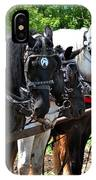 Draft Horses All In A Row IPhone Case