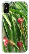 Dragon Fruit Tree IPhone Case