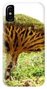 Dragon's Blood Tree 2 IPhone Case