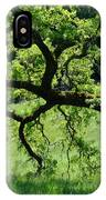 Dreaming Under The Old Oak IPhone Case