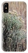 Dried Wildflowers IPhone Case