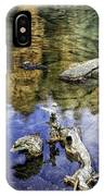 Driftwood And Reflections IPhone Case