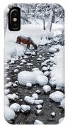 Drinking In Snow IPhone X Case