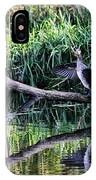 drying cormorant- Black bird sitting on log over water IPhone Case