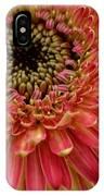 Dsc1003z1-001 IPhone Case