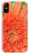 Dsc451d IPhone Case