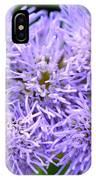 Dsc499d-001 IPhone Case