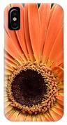 Dsc541d-001 IPhone Case