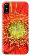 Dsc678d IPhone Case